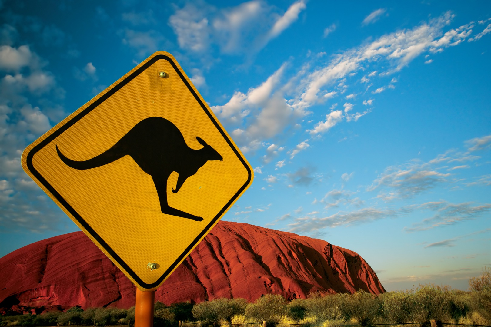 Kangaroo Crossing at Uluru