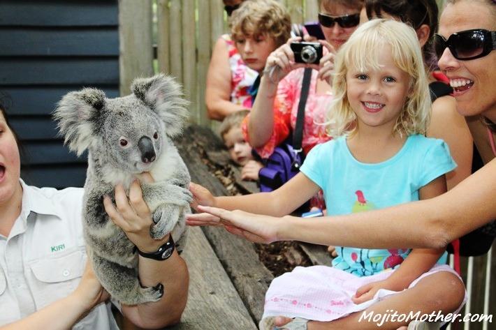 girl koala