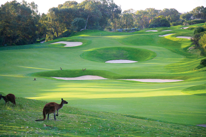 A Melbourne Golf Course